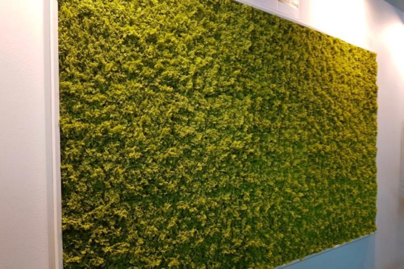 Wandbegrünung mit einer künstlichen Mooswand im Innenbereich.