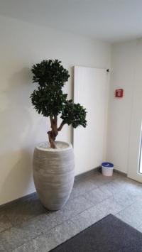 Exklusiver Pittosporum Kunstbaum als Begrünung im Innenbereich in einem Wartebereich.