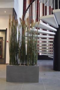 Begrünung Innen mit Raumteiler aus Kunstpflanzen und Gefäss.