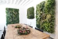 Vertikalbegrünung mit Pflanzen in einem Besprechunszimmer.