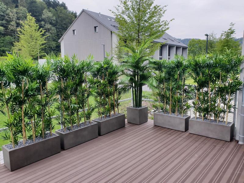 Aussenbegrünung mit wetterfesten Bambus Hecken auf Terrasse als Sichtschutz.