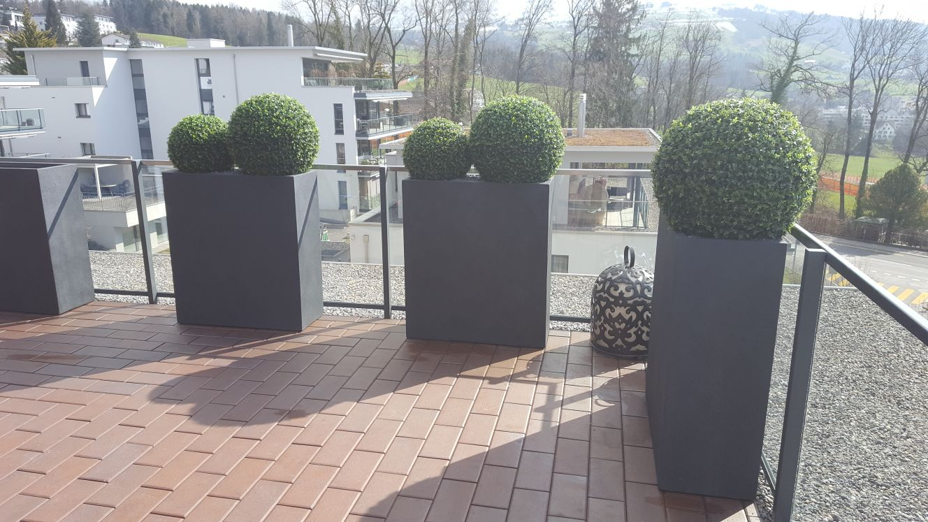 Begrünung Aussen auf Terrasse mit wetterfesten Buchskugeln.