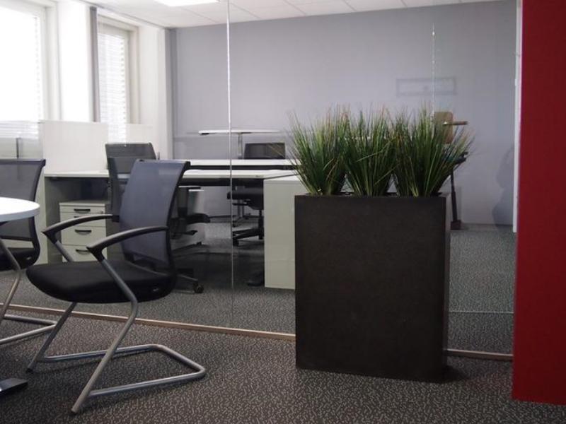 Bürobegrünung mit Pflanzen fürs Büro.