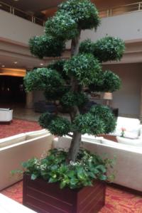 Begrünung im Empfangsbereich innen mit grossem Bonsai Kunstbaum.