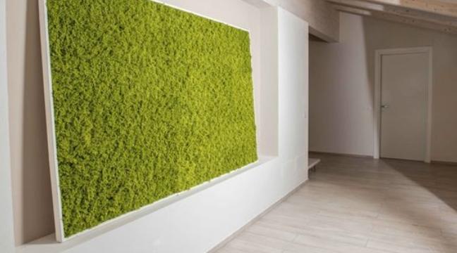 Begrünung mit einer Mooswand mit künstlichem Moos für Indoor und Outdoor.