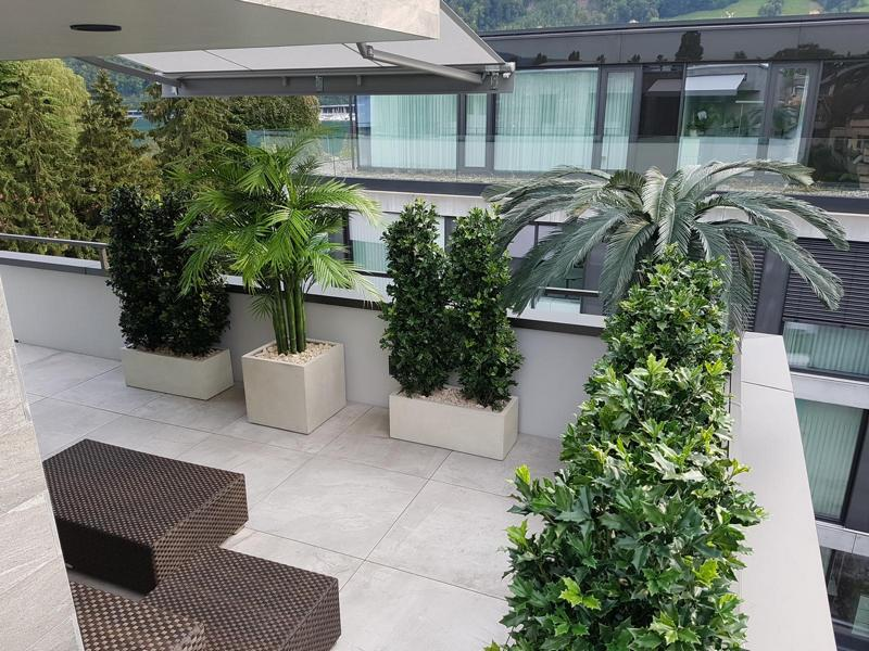 Terrassengestaltung mit Kübelpflanzen auf grosser Terrasse in Nidwalden.