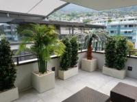 Terrassengestaltung mit Kübelpflanzen, Hecken als Dekoration und Sichtschutz auf Terrasse in Nidwalden.