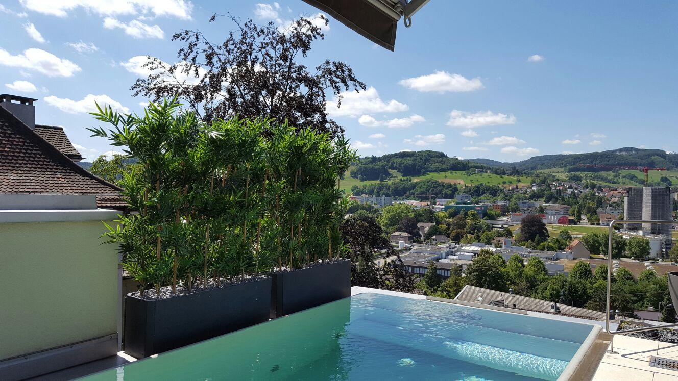 Terrassengestaltung mit winterharten Pflanzen an einem Pool.