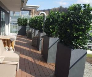 terrassengestaltung schweiz mit kunsthecken premium kunstpflanzen dekohaus ag. Black Bedroom Furniture Sets. Home Design Ideas