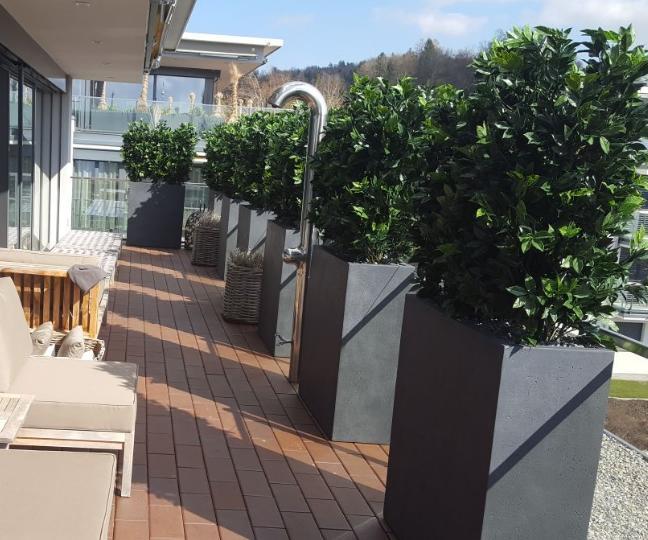 Terrassengestaltung Schweiz mit Kunsthecken in hohen Pflanzgefässe.