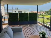 Terrassengestaltung mit Buchshecken als Sichtschutz.