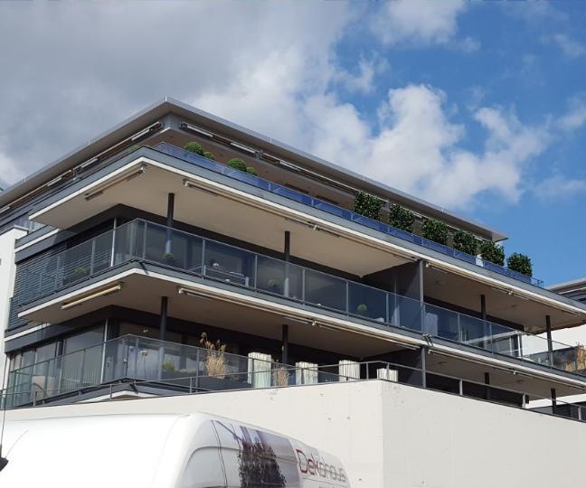 Terrassengestaltung Zürich mit immergrünen Pflanzen und Hecken.
