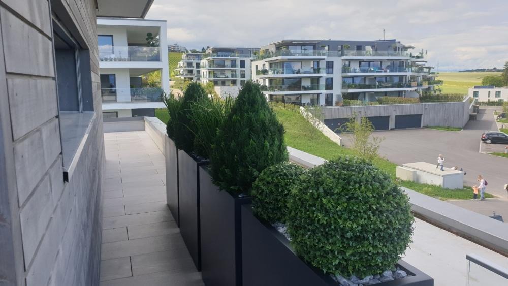 Wetterfeste Kunstpflanzen für draussen auf Terrasse