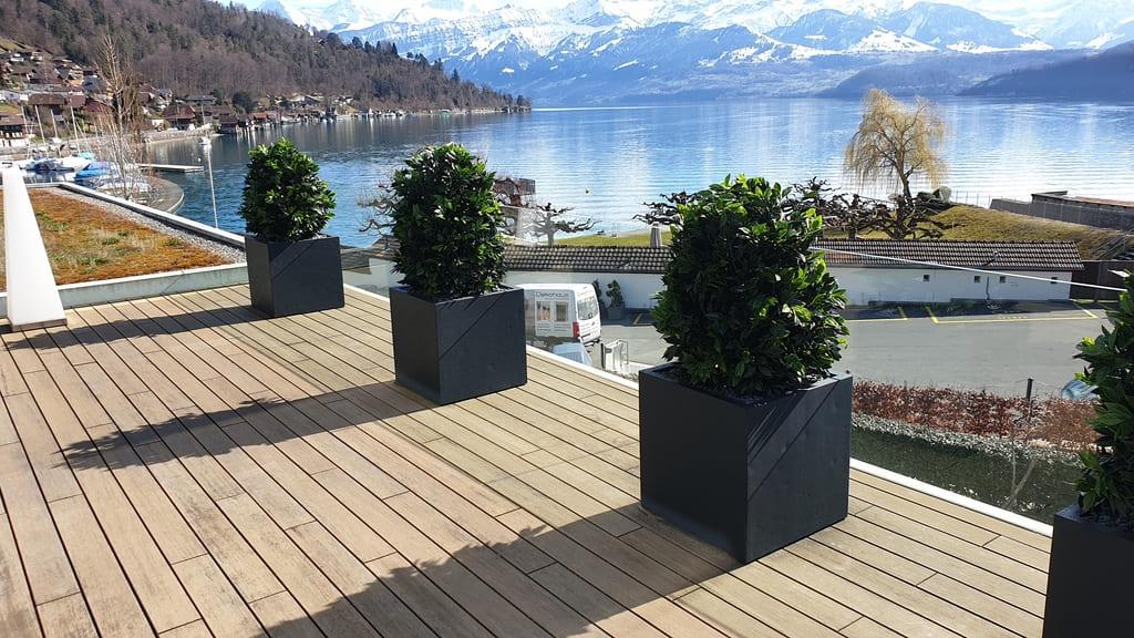 Bepflanzung Terrasse mit Outdoor Lorbeer Kunstpflanzen