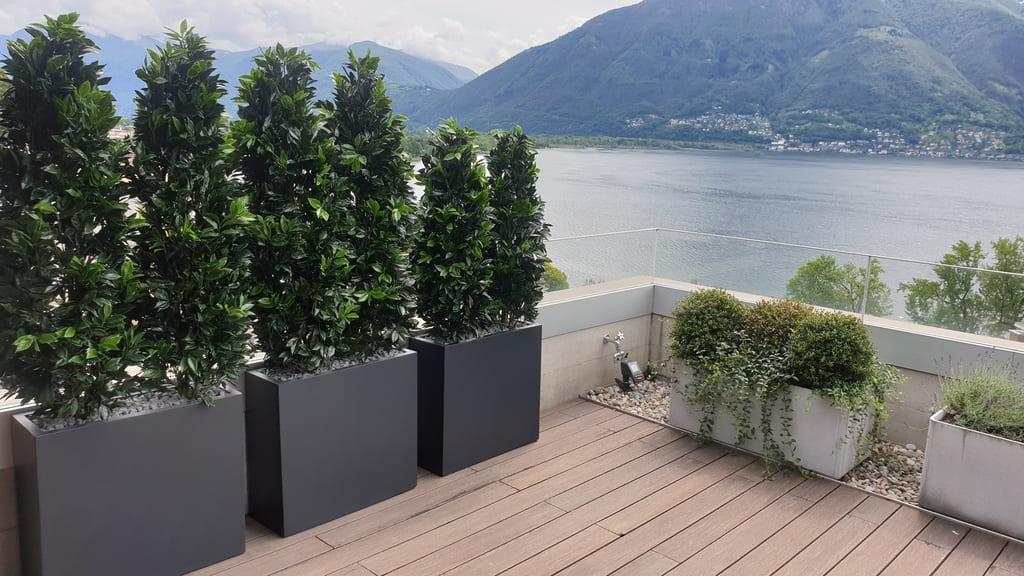 Terrassenbegrünung mit künstlichen Lorbeer-Hecken als Sischtschutz